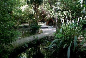 ニュージーランド先住民族マオリの家