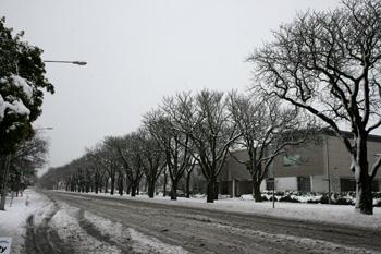 雪のクライストチャーチ