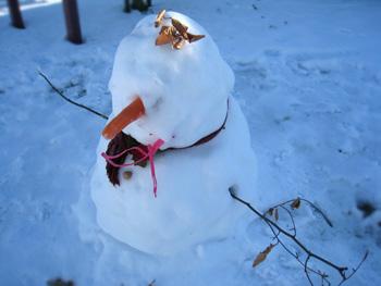 クライストチャーチで大雪